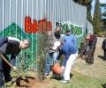 ВМРО засади 30 кипариса край ресторант