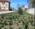 В Община Гълъбово тече подготовка за пролетно-летния сезон
