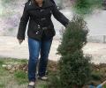 Залесяват 3 зелени площи в Гълъбово