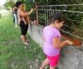 """Акция на сдружение """"Солидарност"""" разкрасява гълъбовското село Обручище"""