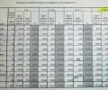 Избирателната активност в 17.00 ч е 29,99% в областта, 29,39% в община Стара Загора