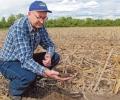 Безорното земеделие иска малко труд, но много ум