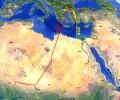 На 4000 км от дома - белошипи ветрушки от новосъздадената колония в Сакар зимуват в Чад и Нигер