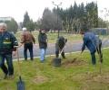 За втора поредна година Граждански клуб ЛИПА засади дръвчета в Новия парк на Стара Загора