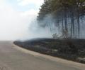 Заради пожар въведоха за няколко часа в събота бедствено положение в община Гълъбово