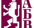 Националният съвет на АБВ номинира ген. Румен Радев за кандидат-президент