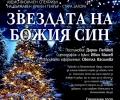 Община Стара Загора организира конкурс за коледна украса
