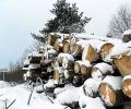 Нормализират се доставките на дърва в Стара Загора, скоро - и в региона