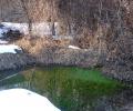 Река бликна насред Стара Загора от топъл зелен извор