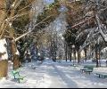 Над 33 000 лв. са санкциите за снегопочистването в Стара Загора