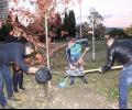 МГЕРБ с тридневна кампания за залесяване в Стара Загора