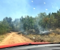 Комисар Стоян Колев: Голям пожар край Верен в неделя застраши няколко населени места, гасиха го 20 екипа