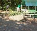 С доброволен труд старозагорци облагородиха пространството около Стария чинар