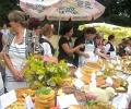 Седмият Национален фестивал на българския фолклор и българските традиционни ястия - Пряпорец 2017 ще се проведе тази събота