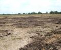 Земеделски производител: Компетентните органи да търсят и други източници за миризмата на оборски тор в Стара Загора