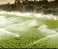 """Стартира приемът на проекти по мярка 6.1. """"Стартова помощ за млади земеделски стопани"""" по Програмата за развитие на селските райони 2014-2020 г."""