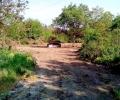 Право на отговор: Относно заравнения терен в парк Бедечка