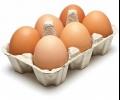 Сигнал за развалени яйца в старозагорски ресторант