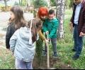 Кипариси бяха засадени в детска градина и училище в Стара Загора в рамките на зелена инициатива