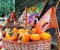 За 12-ти път в Хрищени отбелязаха Празника на райската ябълка