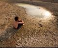 Доклад на WWF показва, че засушаванията засягат 55 млн. души годишно