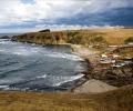 По случай Деня на Черно море WWF призовава да избираме устойчива морска храна