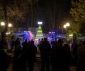 Елха от 680 празни бирени бутилки озари централния парк на Стара Загора