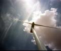 WWF: Зеленият пакт трябва да наблегне на пет ключови аспекта
