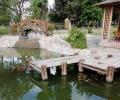 """Водни лилии създават романтика в японското езерце в старозагорския парк """"Артилерийски"""""""