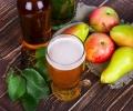 Нови изследвания за качествата на бирата и полезните й съставки