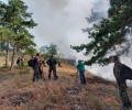 Военнослужещи от Сухопътните войски помогнаха в гасенето на пожара над старозагорското село Дълбоки