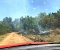 """""""Мини Марица-изток"""" ЕАД участва в потушаването на пожарите в региона"""