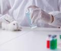 Европейски екозащитници и брандове скочиха против тестването на козметика върху животни