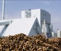 WWF: Неефективното използване на биомасата крие рискове за горите и климата