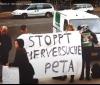 PETA и други организации за защита на животните призовават Европейската комисия да потвърди забраната за тестване на козметика върху животни