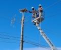 """174 нови платформи за щъркелови гнезда по стълбовете монтира през 2020 г. """"Електроразпределение Юг"""""""
