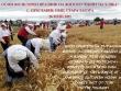 Осми фолклорен празник на житото ще се проведе в старозагорското село Преславен
