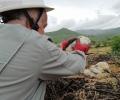 Сътрудници на ЕVN България спасиха паднал от гнездото млад щъркел