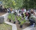 Четвъртокласници засадиха 150 цветя в центъра на Стара Загора