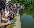 20 млади диви патици бяха пуснати в езеро