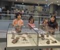 Десетки старозагорци се включиха в Нощта на музеите