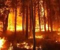 """Благодарствен адрес до """"Мини Марица-изток"""" ЕАД за потушаването на пожара край Твърдица"""